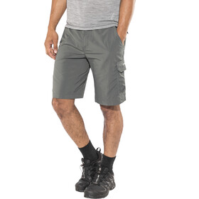 Columbia Silver Ridge II - Pantalones cortos Hombre - gris
